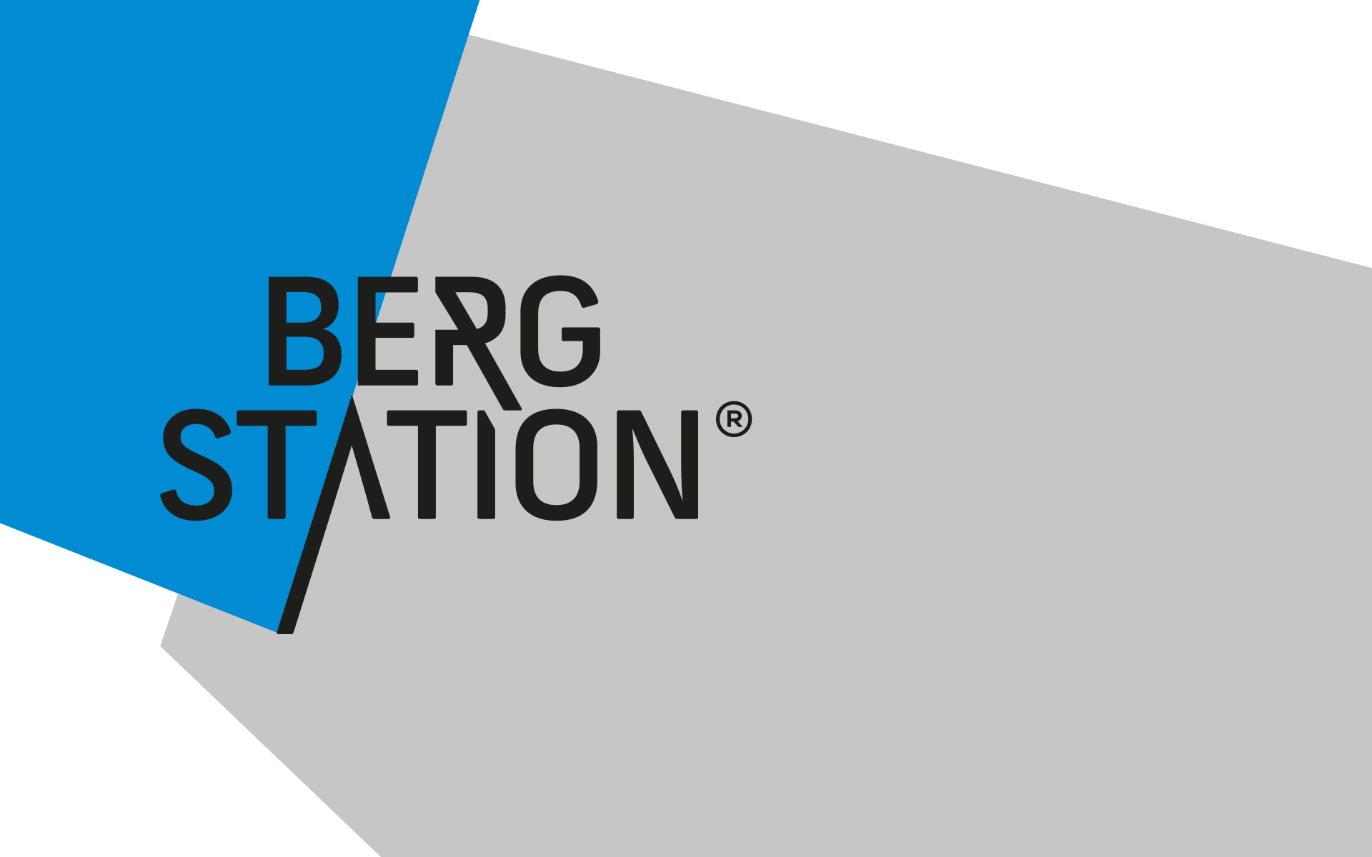 Bergstation Corporate Design, Logo und Formensprache