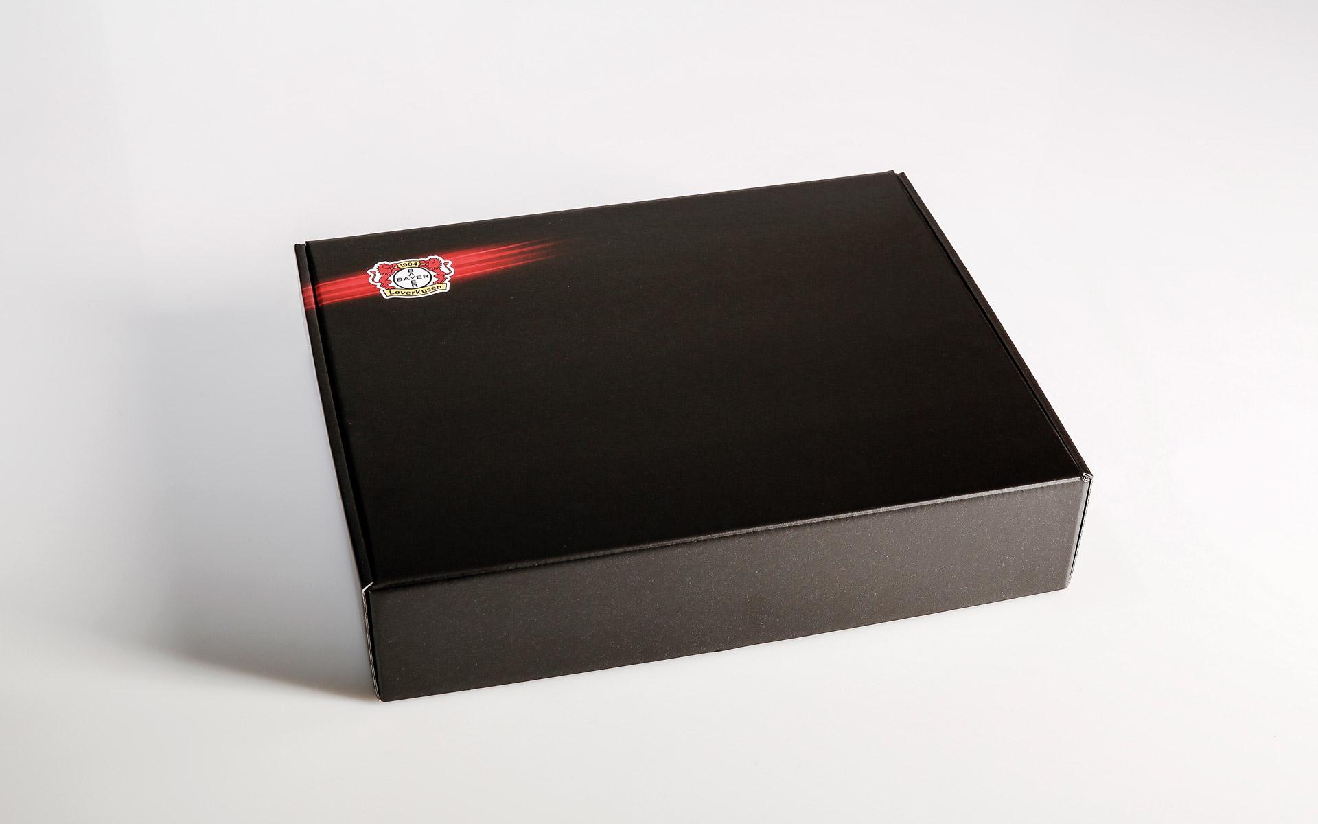 Bayer 04 VIP-Ticketbox, Versandkarton geschlossen
