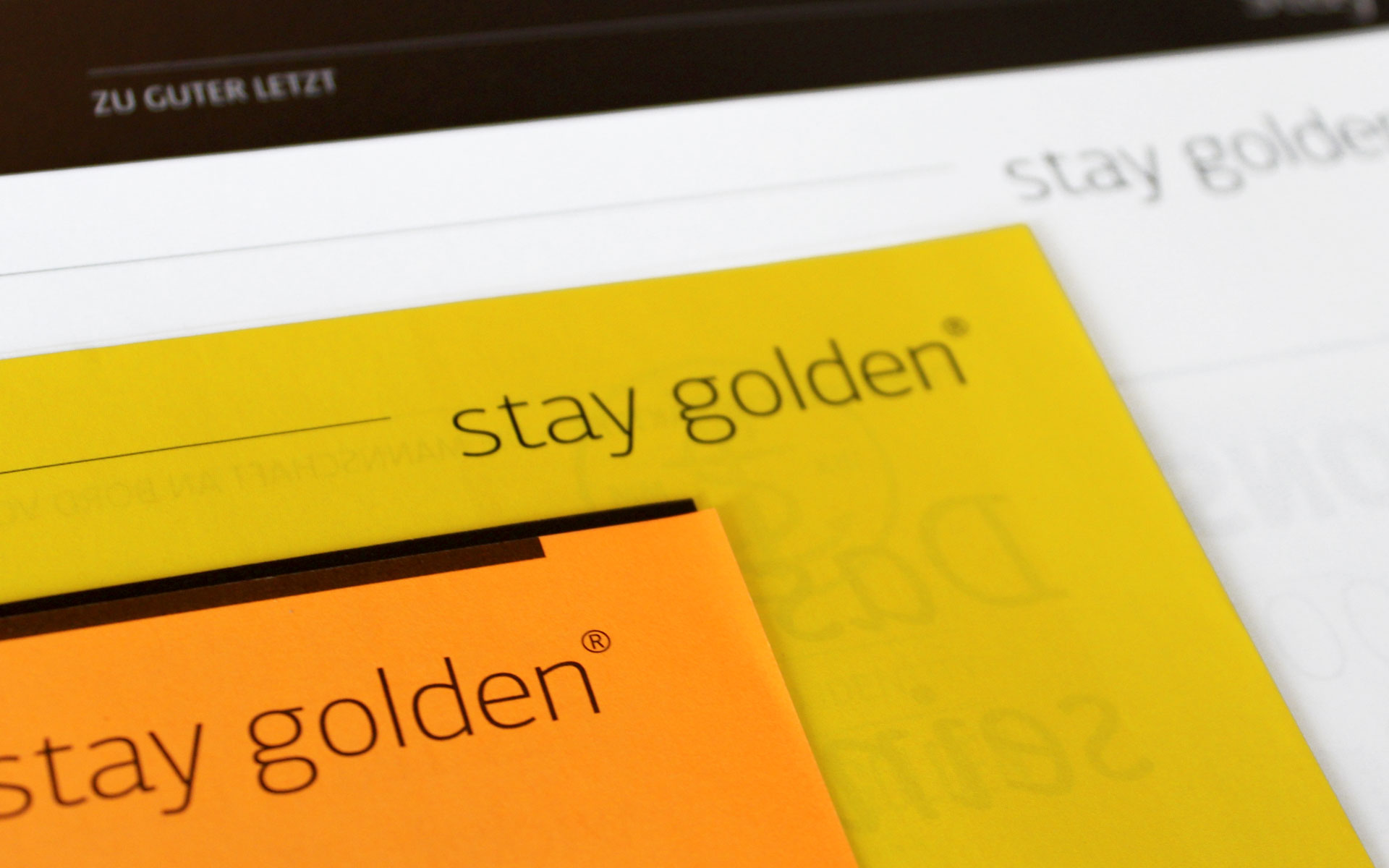 stay golden Brand Identity, Corporate Design, Newsletter 804-staygolden