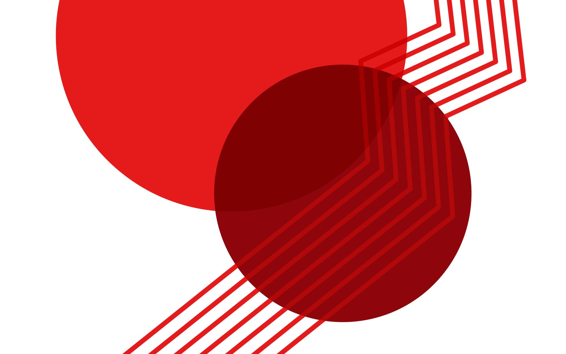 Trainerakademie Köln Corporate Design, Kombination von Gestaltungselementen