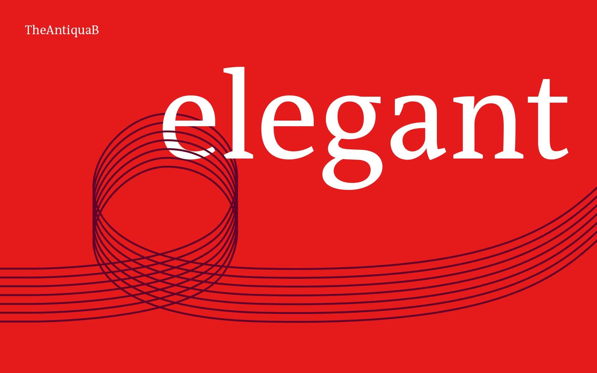 Trainerakademie Köln Corporate Design, Corporat Typography
